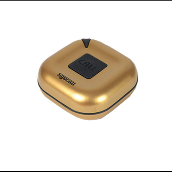 Wireless Digital Pager